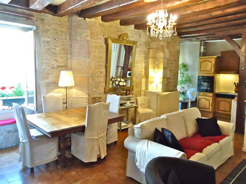 Perfect for a couple of seniors/ family ::Roussin 2 bedroom - IN PRIME, SAFE AND FRIENDLY QUARTERS OF DIJON - Dijon - rentals