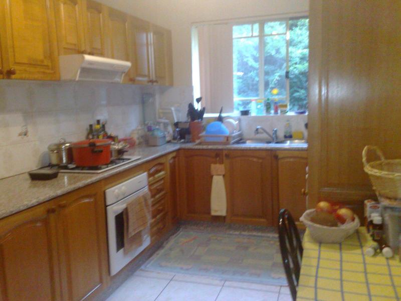 Kitchen - Luxury Budget Apartment-25mins to Sydney CBD+WiFi - Sydney - rentals