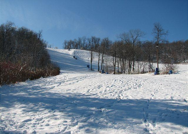 Ski Slopes 50 Yards from House - Incredible 3 Bedroom luxury townhome w/ Hot tub in the heart of DCL! - McHenry - rentals