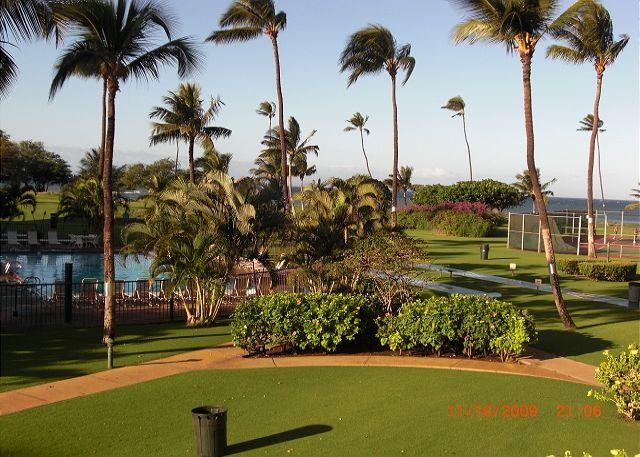 Maui Sunset 215A ~ 1 Bedroom, 2 Bath, Full Kitchen with Comp Wifi. - Image 1 - Kihei - rentals