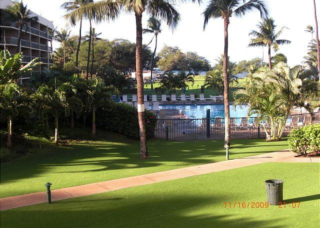 Great Summer Special!  Maui Sunset 213A ~ 1 BR, 2 BA ocean views! - Image 1 - Kihei - rentals