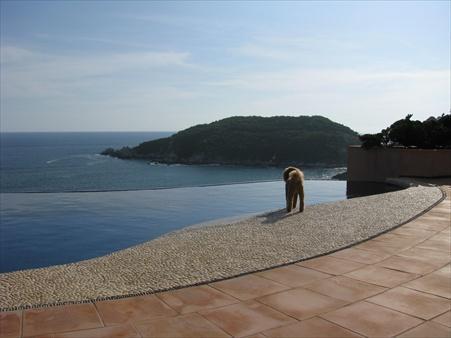 Open Pacific, private pool - Casa Linda - Zihuatanejo - rentals