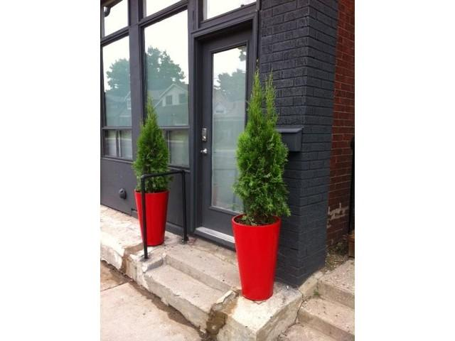 Welcome to SoHo Woodbine - WOW Central/East - Studio-1- Danforth - Toronto - rentals