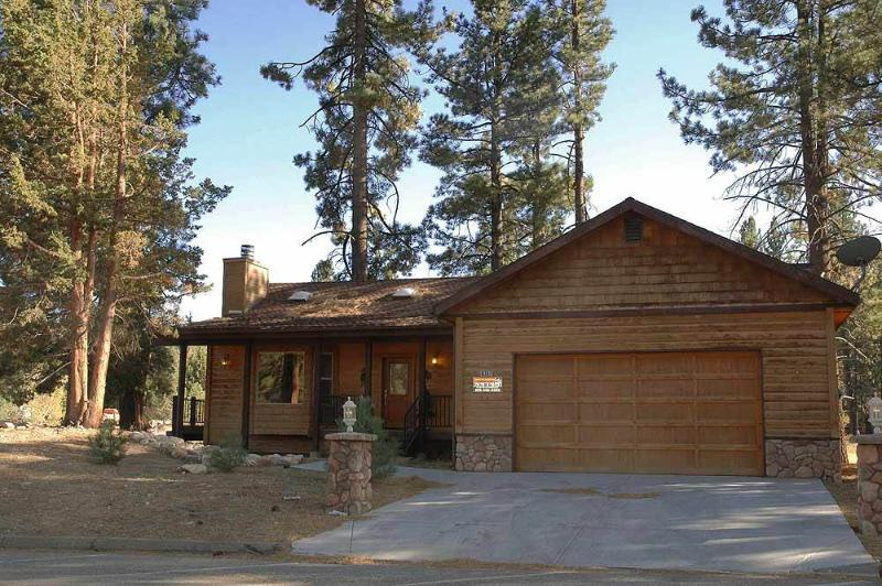 Can't Bear to Leave  #1156 - Image 1 - Big Bear Lake - rentals