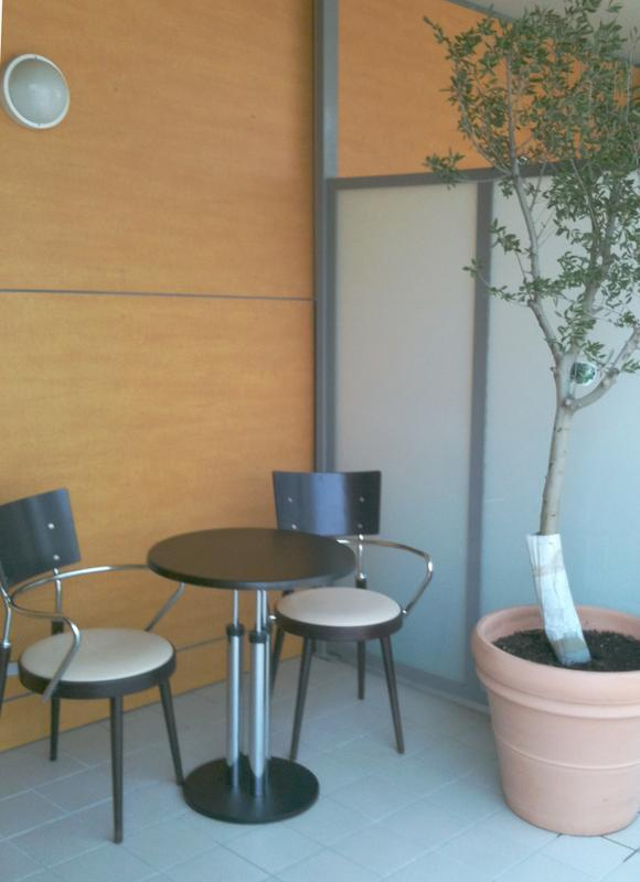 balcon olive tree nothumb - Rental propety apartment in Grenoble downtown - Grenoble - rentals