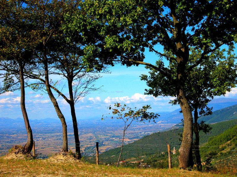 sensational views from the huge private grounds, surrounding Vista Del Mondo - Vista Del Mondo:Country House, Spoleto - 7 miles - Spoleto - rentals