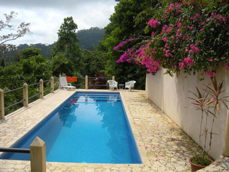 Private 40 foot ocean view pool - Casa Toucan: Jungle Setting with Ocean View & Pool - Uvita - rentals