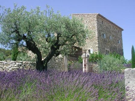 Villas in Mas Luberon | Rent a Villa with Classic Vacation Rental! - Image 1 - Gordes - rentals