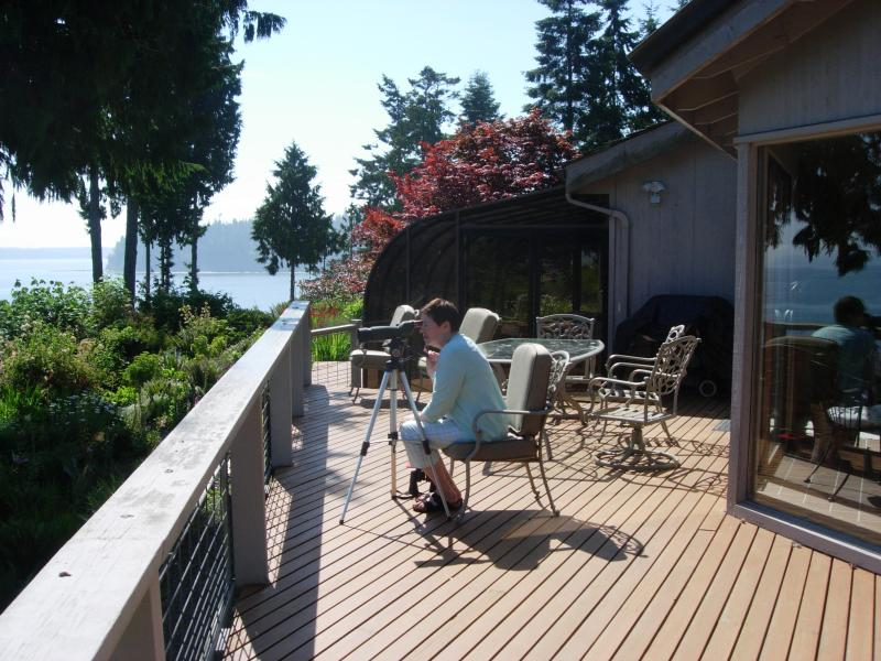 Guest checking for seals on nearby rocks - Highbank Waterfront Home Magnificent Mt.Water View - Port Ludlow - rentals
