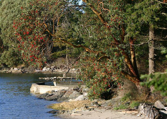 This private beach is just steps from the cottage. - Marina View on Orcas Island - Deer Harbor - rentals