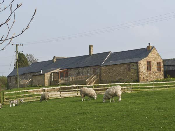 THE DAIRY , pet friendly, country holiday cottage, with hot tub in Milton, Ref 4585 - Image 1 - Milton - rentals
