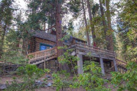 Find Complete Peace in Authentic Log Cabin ~ RA867 - Image 1 - Zephyr Cove - rentals
