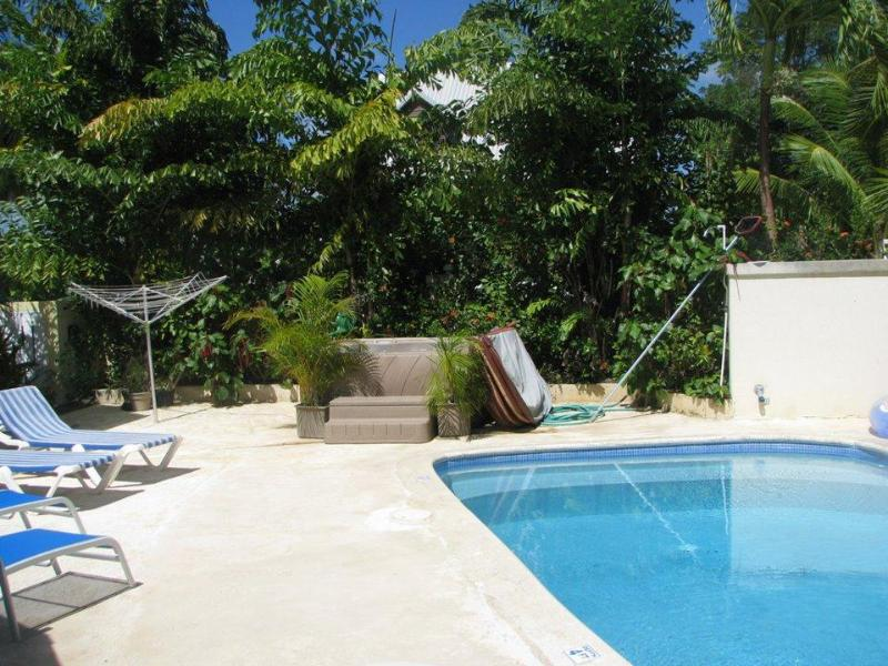 East  Pool and spa villa - Vida Mejor east pool - Holetown - rentals