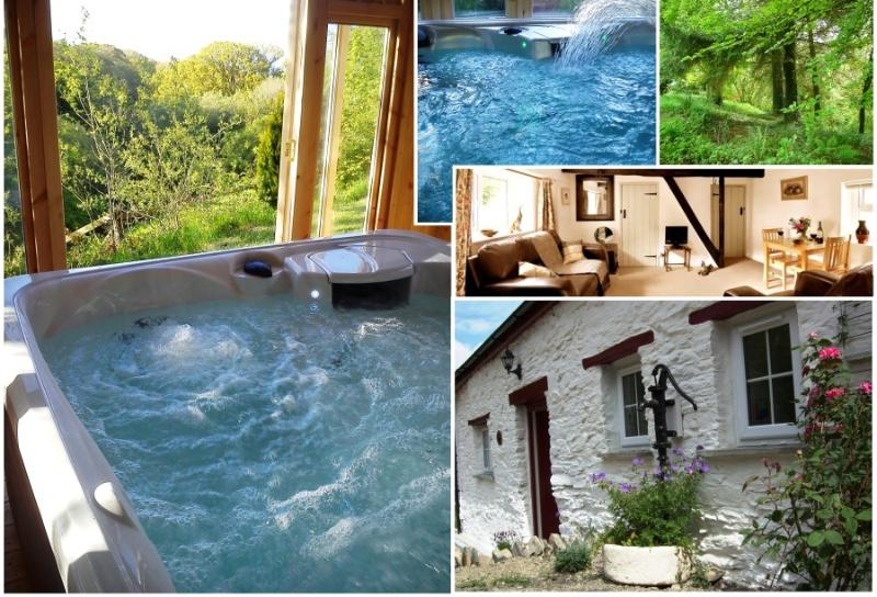 Images of Blaenfforest - Blaenfforest Granary - Holiday Cottages Wales - Newcastle Emlyn - rentals