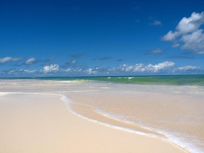 Your Beach at Ocean Daze! - Stunning, Luxury, Property Directly on both the Beach & Savannah Sound!!! - Eleuthera - rentals