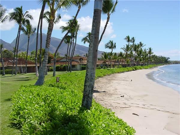 Charming House in Lahaina (Puamana 129-1 (2/2) Standard GV) - Image 1 - Lahaina - rentals