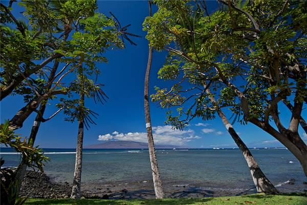 Beautiful House with 1 Bedroom, 2 Bathroom in Lahaina (Puamana 38-2 (1/2) Superior OF) - Image 1 - Lahaina - rentals