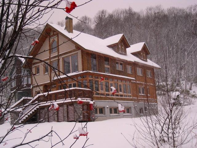 Over View of the House - Shinrin Lodge - Niseko-cho - rentals