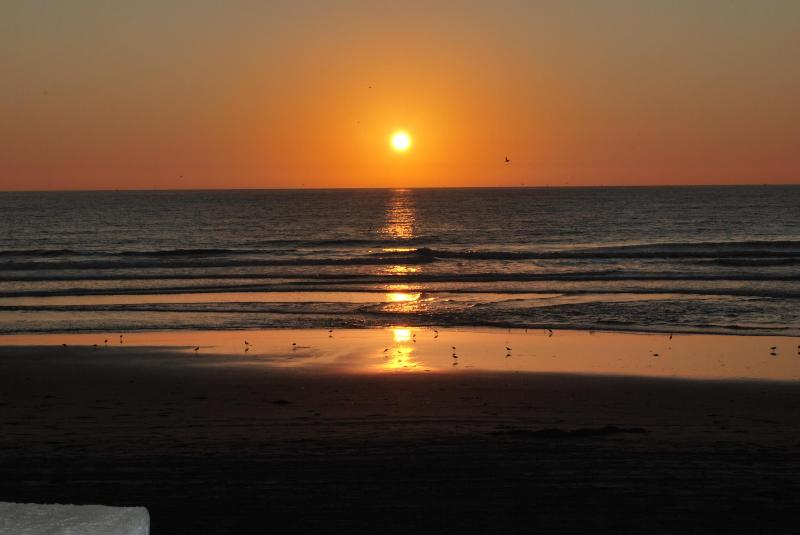 Amazing Sunsets - 2 BR Condo - Awesome Beachfront with Oceanview! - Pacific Beach - rentals
