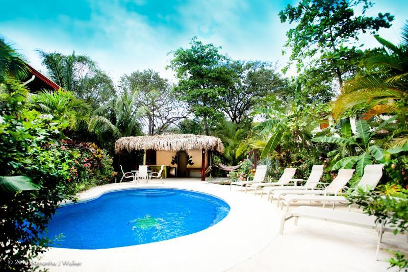 Our pool - Suite Del Mar at Villa Tortuga in Nosara, CR - Nosara - rentals