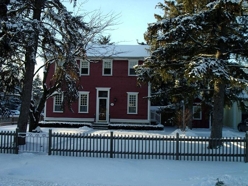 Simcoe Pines on a snowy morning in December - Simcoe Pines, 4 Bdrm Luxury home with heated pool - Niagara-on-the-Lake - rentals