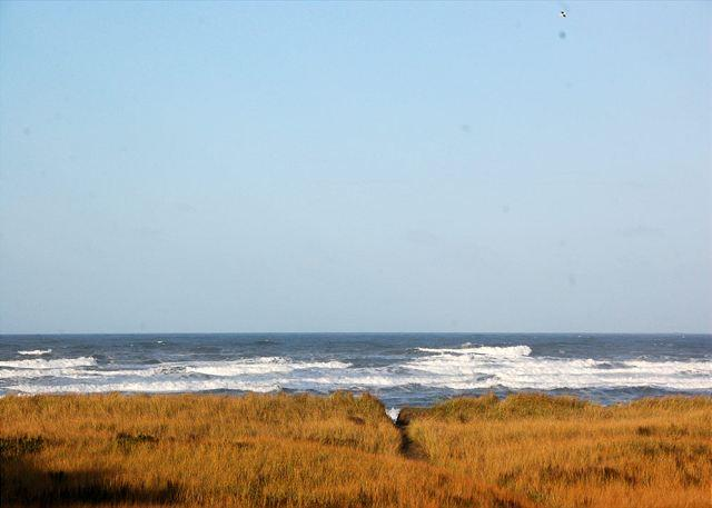 Vacations by the Sea - 224 - 2-Bedroom, Pet Friendly Oceanfront Condo with Awesome Views! - Westport - rentals