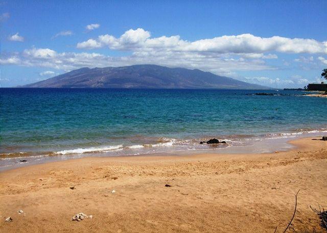 Mokapu Beach , Closest Beach To Wailea Ekolu - Wailea Ekolu #102  2 Bd 2 Bath, Ocean View, A/C,  Sleeps 6  Great Rates!! - Wailea - rentals