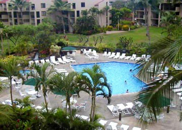 Kamaole Sands Pool area - Kamaole Sands #8-110  Quiet Location 1/2 Great Rates! - Kihei - rentals