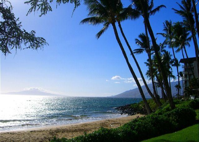 Kamaole 2 Beach across the street from the condo - Across from Kamaole Beaches  Kihei Akahi 1 Bd 1 Ba   Great Rates!! - Kihei - rentals