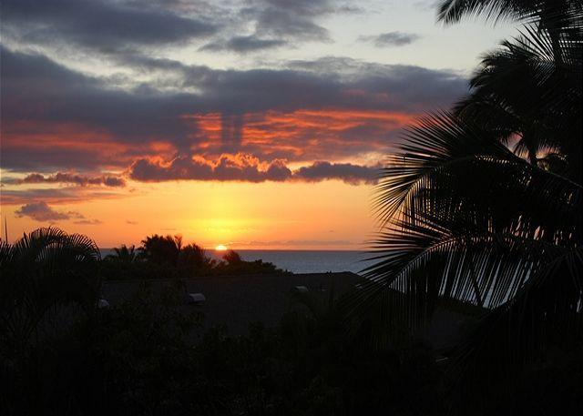 Across from Kamaole Beaches  Kihei Akahi 1 Bd 1 Ba   Great Rates!! - Image 1 - Kihei - rentals