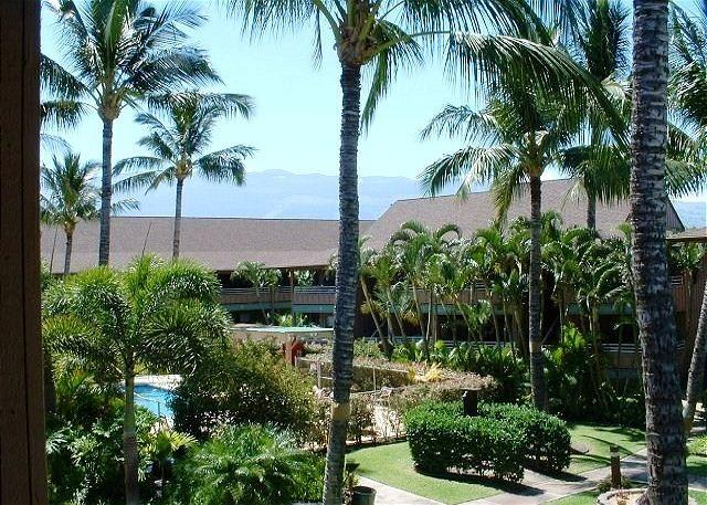 Kihei Bay Vista - Kihei Bay Vista C105 Remodeled 1/1  Great Rates   Sleeps 4 - Kihei - rentals
