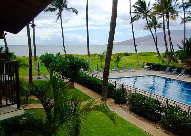 Waiohuli Beach Hale Pool and Grounds - Waiohuli Beach Hale #D-223 Oceanfront Ocean View 1 Bd 1 Ba  Great Rates!! - Kihei - rentals