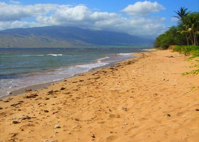 Waiohuli Beach Just Across From Kihei Garden Estates - Kihei Garden Estates A102 Garden View 1/1 Great Rates Right Across From Beach - Kihei - rentals