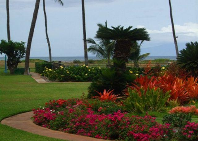 View from Unit 113 - Waiohuli Beach Hale #C-113  2 Bd 2 Bath Oceanfront Ocean Views! Great Rates!! - Kihei - rentals