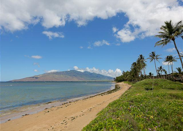 Waiohuli Beach Hale #D-114 Lovely Unit, Sleeps 4 1 Bd 1 Bath Great Rates! - Image 1 - Kihei - rentals