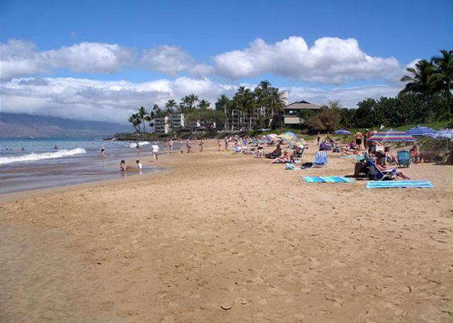 Kamaole Beach II - Maui Banyan P-306 1 bedroom, 2 Bath located in the heart of Kihei! - Kihei - rentals