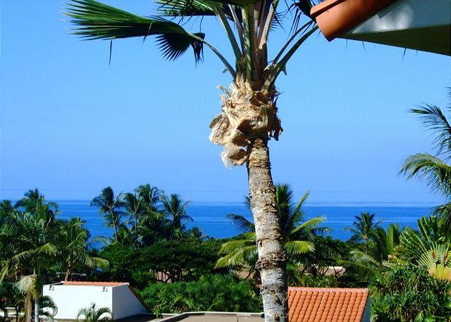 Ocean View Lanai - Palms at Wailea #1204 Ocean View, Sleeps 4. - Wailea - rentals