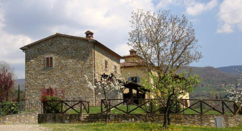 Lovely Villa with Countryside Views of Tuscany - Villa Andreina - 14 - Image 1 - Subbiano - rentals
