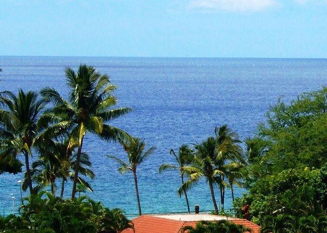 Palms at Wailea #1101 Great Ocean Views! Large Sun Deck!  2/2 Great Rates! - Image 1 - Wailea - rentals