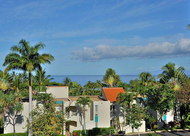 Palms at Wailea #1105 Oceanview Completely Remodeled 2Bd 2Bath Great Rates! - Image 1 - Wailea - rentals