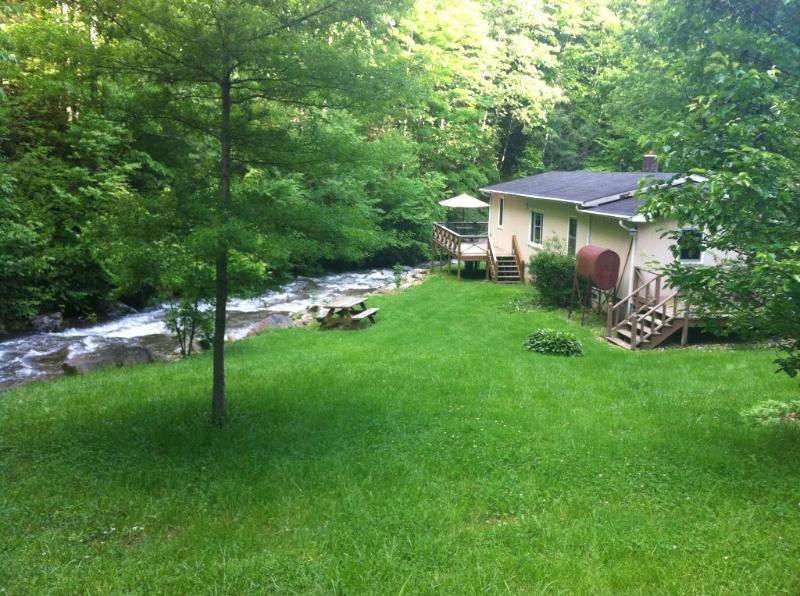 Privacy, creek front, fishing, fire pit on creek, hiking out the front door in USFS land - PIGEON ROOST CREEK (Privacy, Trout Stream, Hiking) - Burnsville - rentals
