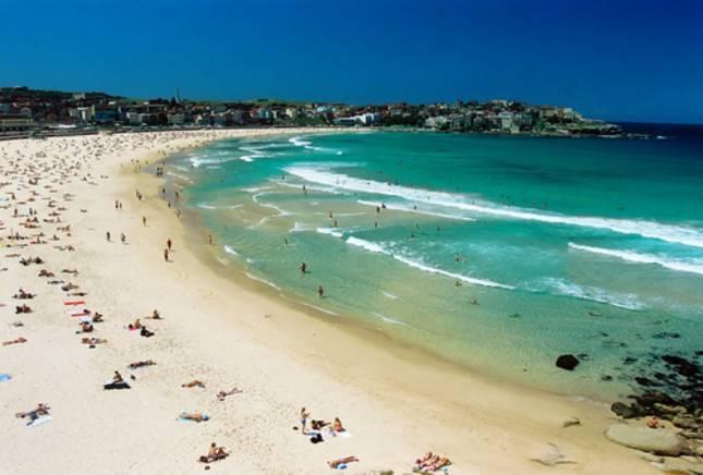 Bondi Beach Holidays - Bondi Beach Holidays - Elegant Vacation Apartments - Bondi - rentals