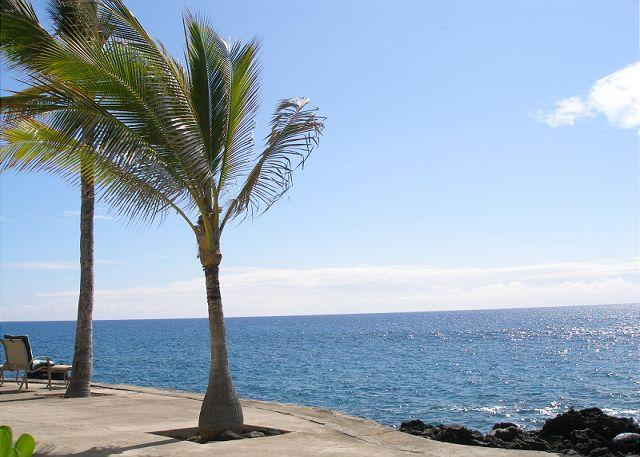 Surf & Racquet Club 37 - Image 1 - Kailua-Kona - rentals