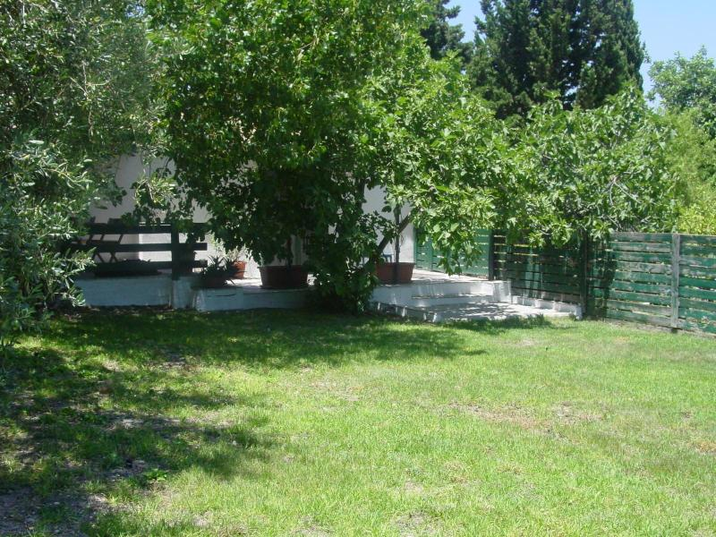 the garden - Rural and relaxing cottage in sunny Sicily! - Noto - rentals