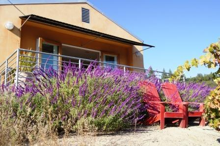 Terrace with view - Modern Sophisticated Private Views Hot Tub - Healdsburg - rentals