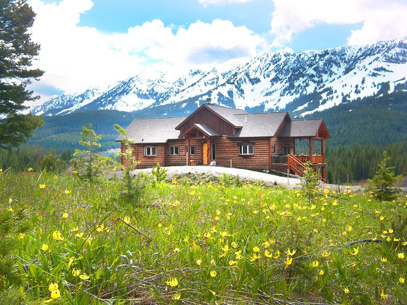 Glacier Lilies in May - gorgeous wildflowers all around our home all summer - Perfect Location near Bozeman - Luxury Log Home - Bozeman - rentals