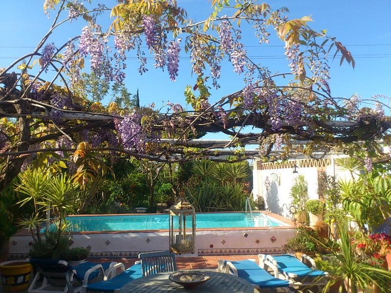 ENTRANCE: Casa Pequeña - Springtime - CASA PEQUEÑA, cottage-style villa, lush gardens - Motril - rentals