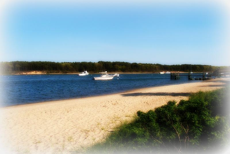 Beach - Cozy Cape Cod Cottage - Falmouth - rentals