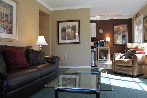 #1103 Living Room - Convention Center and Pikes Place Market - Explore Seattle from our Downtown Condos - Seattle - rentals