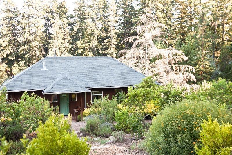 Lavender Cottage - Lavender Cottage in Wine Country Near Sonoma Coast - Sebastopol - rentals